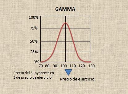 warrant-gamma